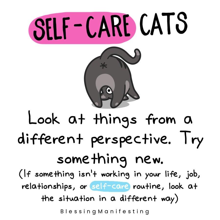 self-care cats