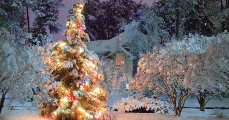 My Favorite Winter ASMR Scenes