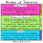 Window of Tolerance